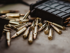 Waffensachkunde